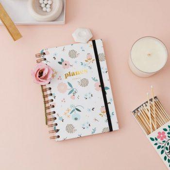 planes-erizo-blanco-diario