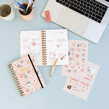 planes-erizo-rosa-semanal 2